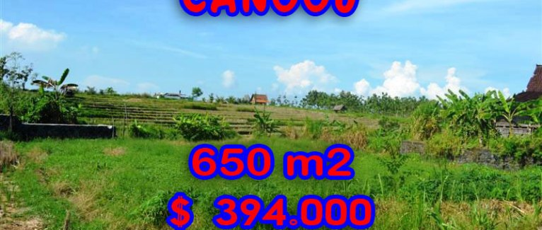 Amazing Property in Bali, Land for sale in Canggu Bali – TJCG106