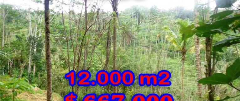 Amazing Property in Bali, Land for sale in Ubud Bali – TJUB275