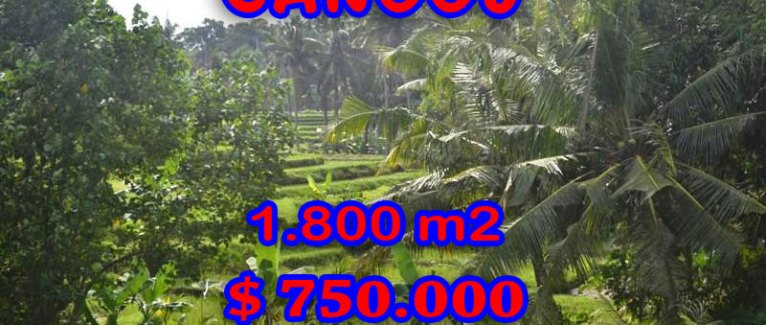 Land for sale in Bali, Fantastic view in Canggu Bali – TJCG111