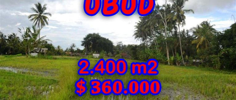 Magnificent Property for sale in Bali, land for sale in Ubud Bali – 2.400 sqm @ $ 150