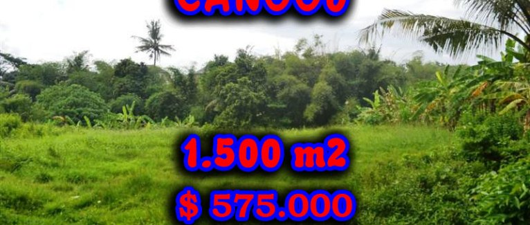 Bali Property for sale, Stunning land for sale in Canggu Bali  – 1.500 sqm @ $ 383