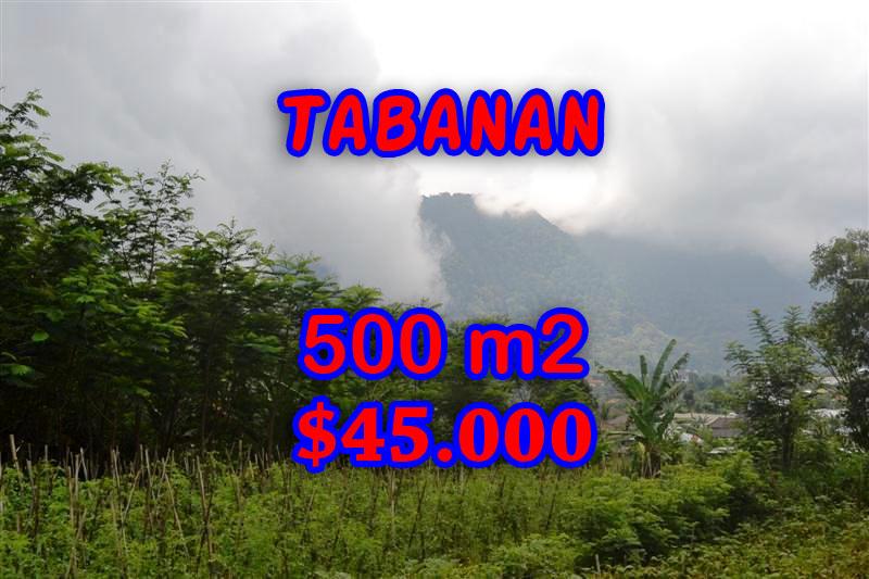 Fascinating Land in Bali for sale in Tabanan Bedugul Bali – TJTB063