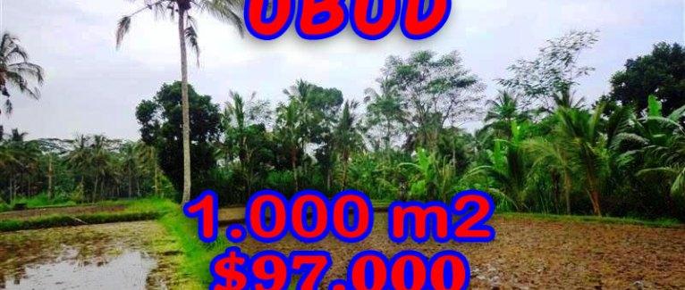 Amazing Property in Bali, Land for sale in Ubud Bali – TJUB255