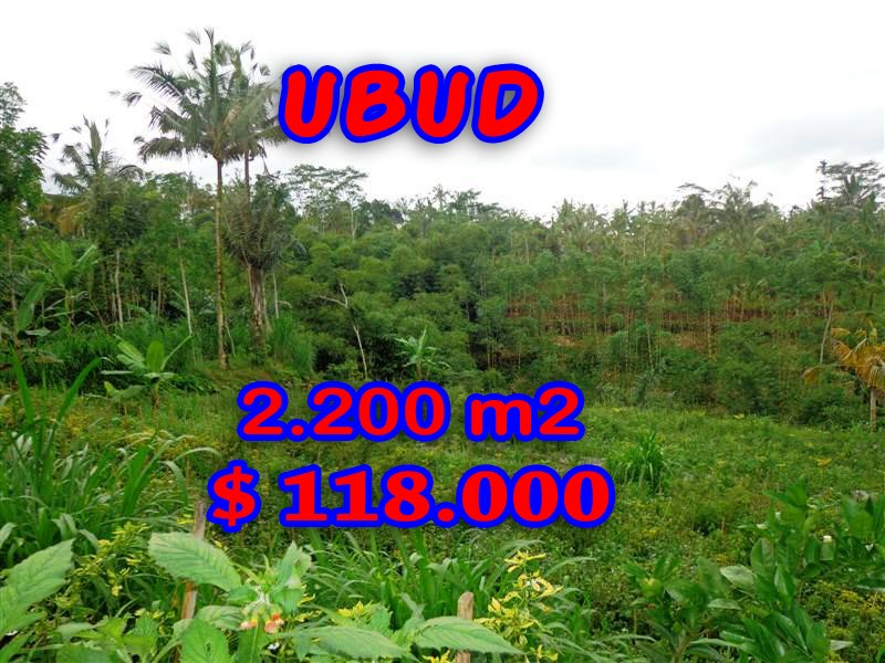 Outstanding Property for sale in Bali, land for sale in Ubud Bali  – 2.200 sqm @ $ 53