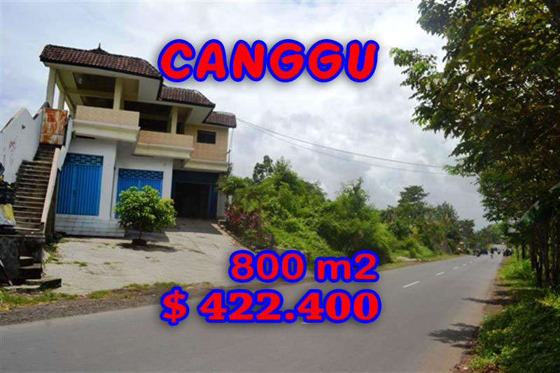 Land for sale in Bali, Spectacular Rice fields view  in Canggu Cemagi – TJCG094