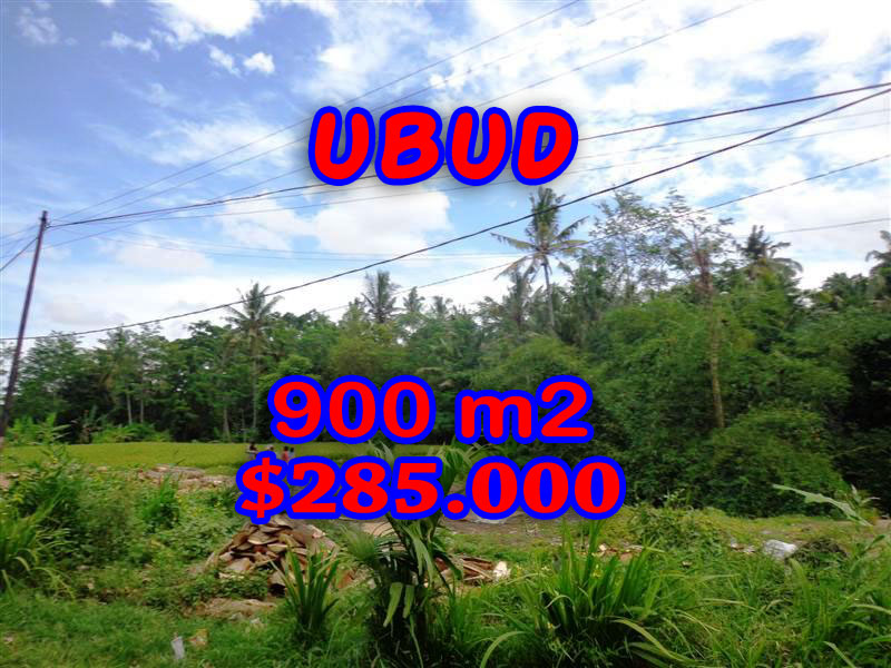 Exceptional Property in Bali, Land in Ubud Bali for sale – TJUB259