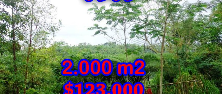 Incredible Property for sale in Bali, land for sale in Ubud Bali – 2.000 sqm @ $ 61
