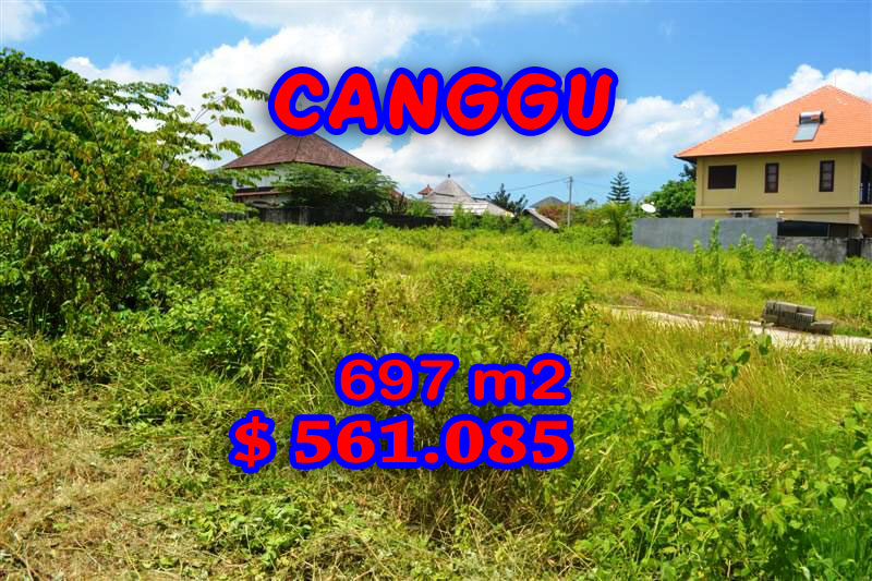 Exceptional Land for sale in Bali, Beautiful Rice fields view  in Canggu Berawa – TJCG097