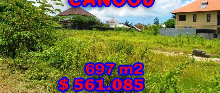 Beautiful Land in Bali for sale, stunning Rice fields view  in Canggu Berawa – TJCG097