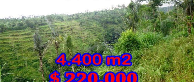 Magnificent Property for sale in Bali, land for sale in Ubud Bali – 4.400 sqm @ $ 50