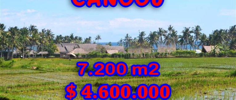 Land for sale in Bali, fabulous view in Canggu pererenan – TJCG118
