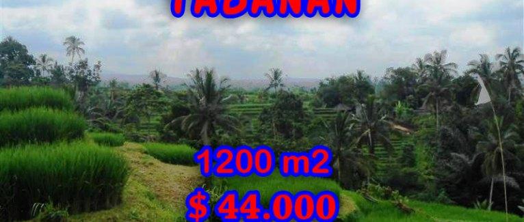 Land for sale in Bali, Fantastic view in Tabanan Bali – TJTB053