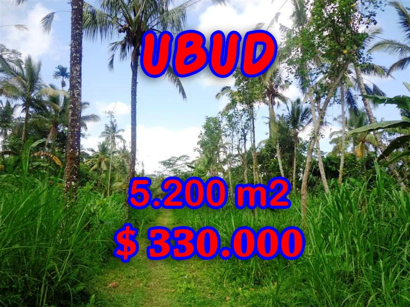 Fantastic Land in Bali for sale, Amazing rice fields and river valley view in Ubud Tegalalang – TJUB296