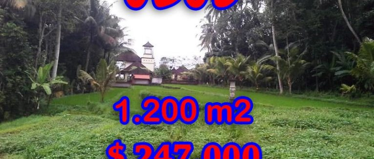 Land in Bali for sale, Magnificent view in Ubud Tegalalang – TJUB297