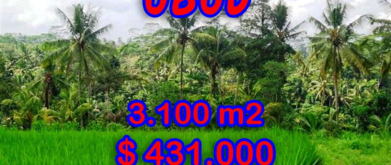 Amazing Land in Bali for sale, Stunning rice fields view in Ubud Tampak siring – TJUB268