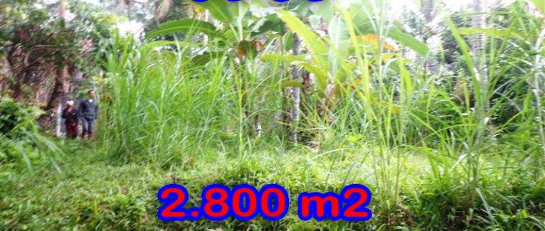Amazing Land in Bali for sale in Ubud Tampak Siring Bali – TJUB285