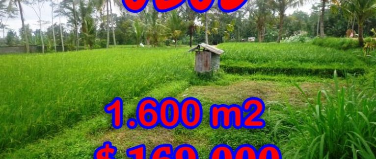 Magnificent Land for sale in Bali, rice fields view in Ubud Tampak Siring Bali – TJUB291
