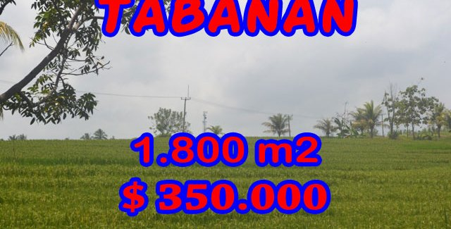 Land in Tabanan for sale, Stunning view in SOKA TABANAN Bali – TJTB083