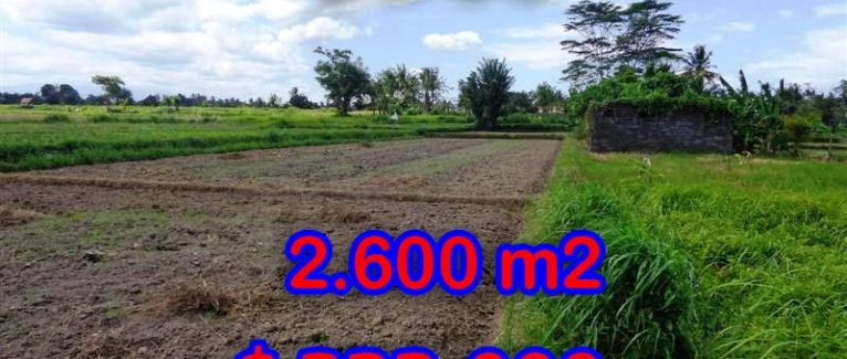 Land for sale in Bali, Fantastic view in Ubud Bali – TJUB300