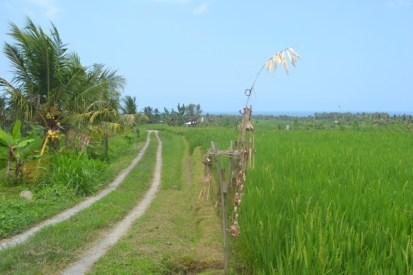 Land for sale in Tabanan, Bali