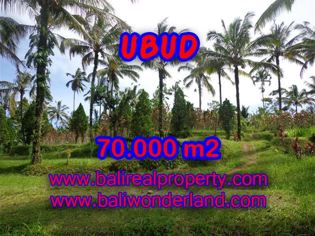 Land for sale in Bali, spectacular view in Ubud Bali – TJUB358
