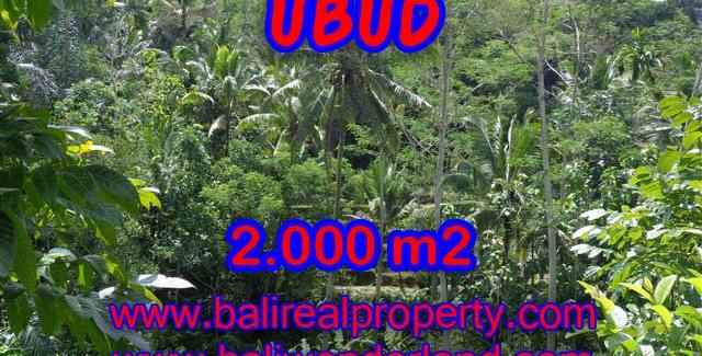 Land in Bali for sale, Stunning view in Ubud Bali – TJUB359