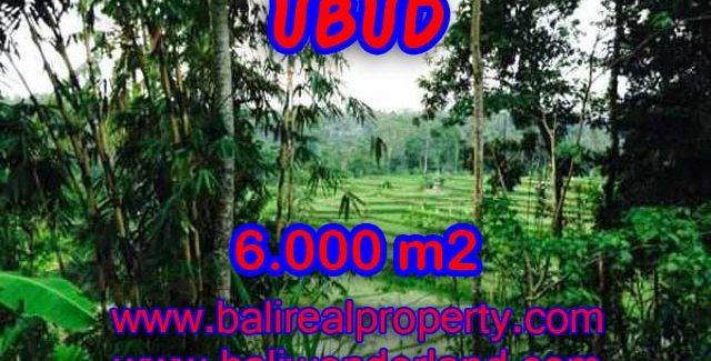 Land in Bali for sale, astounding view in Ubud Bali – TJUB349