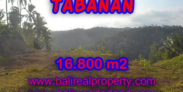 Fantastic Land for sale in Bali, mountain view on river side in SELEMADEG TABANAN – TJTB075