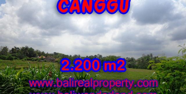 Stunning Property for sale in Bali, land for sale in Canggu Bali  – 2.200 sqm @ $ 283