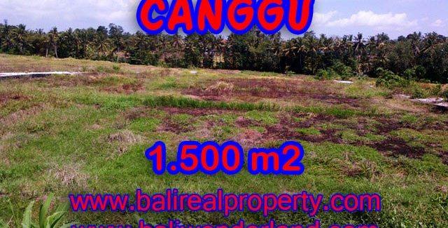 Astonishing Property in Bali, land in Canggu Bali for sale – TJCG127