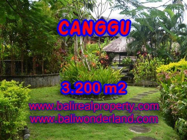 Land in Bali for sale, astounding view in Canggu Bali – TJCG129