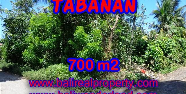 Land in Bali for sale, astounding view in Tabanan Bali – TJTB107