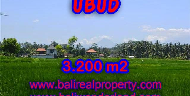 Astonishing Property for sale in Bali, LAND FOR SALE IN UBUD Bali – TJUB385