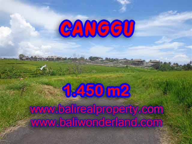 Land for sale in Bali, Fantastic view in Canggu Cemagi – TJCG137