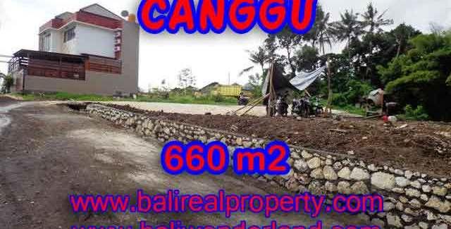 Wonderful Property in Bali for sale, land in Canggu Bali for sale – TJCG149