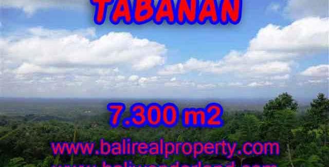 Land in Bali for sale, great view in Tabanan Bali – TJTB123