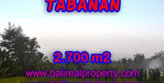 Wonderful Property in Bali for sale, land in Tabanan Bali for sale – TJTB128