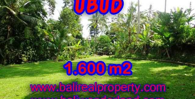 Land for sale in Ubud, Stunning view in Ubud Center Bali – TJUB416