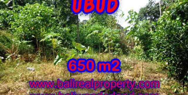 Land in Ubud Bali for sale, Outstanding view in Ubud Center – TJUB417