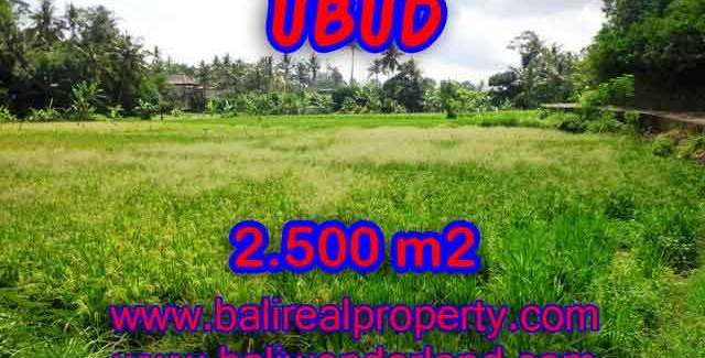Land in Ubud for sale, Stunning view in Ubud Center Bali – TJUB418