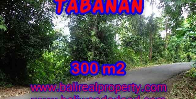 Land for sale in Bali, Fantastic view in Tabanan Selemadeg – TJTB116