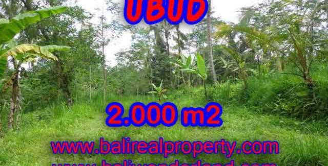 Land for sale in Ubud Bali, Astounding view in Ubud Tegalalang – TJUB406