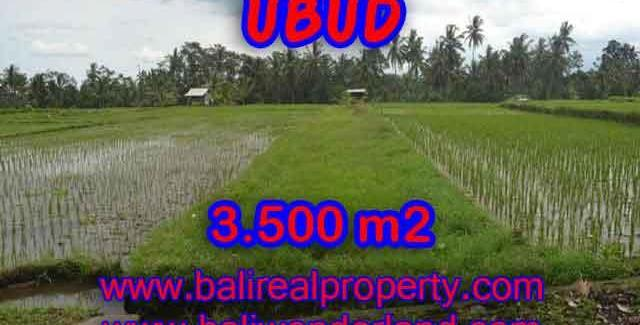 Attractive Property for sale in Bali, land for sale in Ubud  – TJUB395