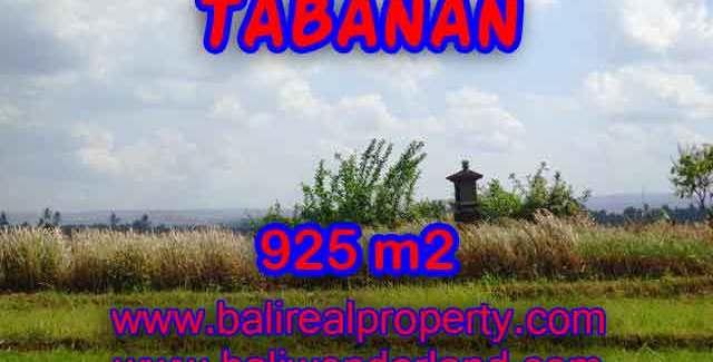 Property sale in Bali, Beautiful land in Tabanan for sale – TJTB135