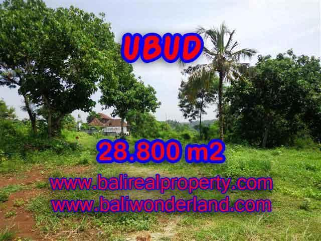 Land for sale in Bali, astonishing view in Gianyar Bali – TJUB366