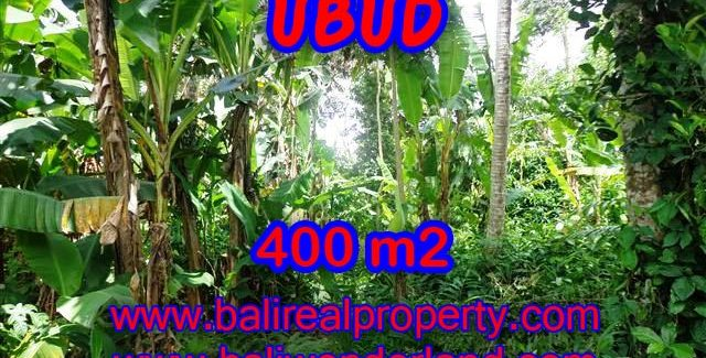 Land for sale in Bali, exotic view in Ubud Center Bali – TJUB371