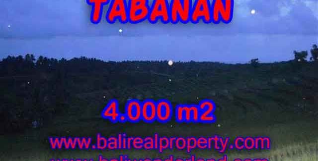 Land for sale in Tabanan Bali, Great view in Tabanan Selemadeg – TJTB096