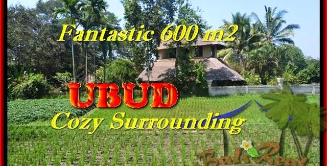 FOR SALE LAND IN UBUD TJUB452
