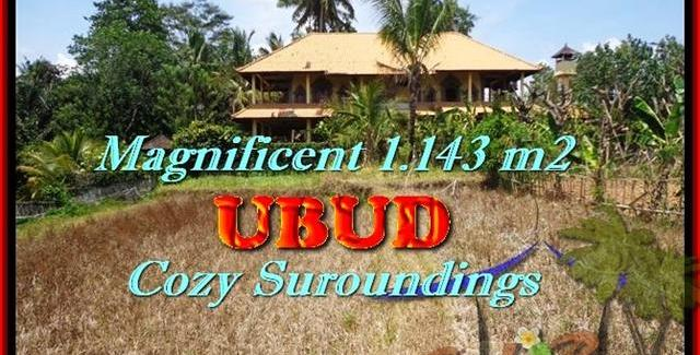 Sentral Ubud 1143 m2 LAND FOR SALE TJUB460