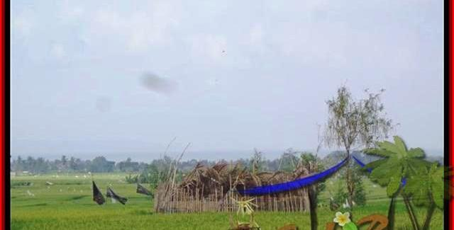 Beautiful PROPERTY 1.650 m2 LAND SALE IN CANGGU TJCG158